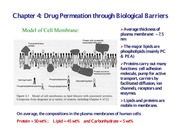 Chapter 4 Drug Permeation Biological Barriers (One slide per page)