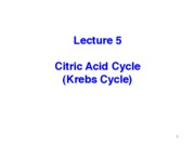 5 - Wednesday 12 January - CITRIC ACID CYCLE