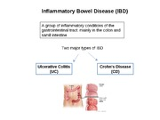 Inflammatory Bowel Disease powerpoint study guide