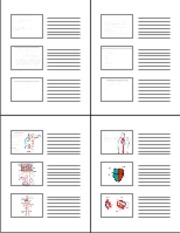 6-Handout Intro Clin Med Blood vessels and heart I %286%29 Slides view