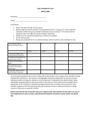 Group Project Peer Evaluation Form.pdf
