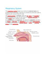 CH.22 Lab. Lecture Respiratory System Bluedoor.docx