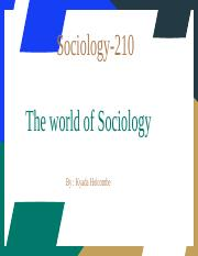 World of Sociology Project (2).pptx