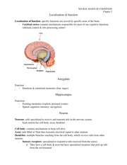 03 Neural Bases of Cognition