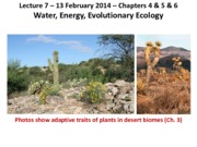 Lecture 7 Ch 4_5_6 Water_Energy_EvolutionaryEcology 2-13-14