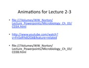 Animation for lecture 2-3
