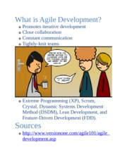 CIS Agile development makeup assigment