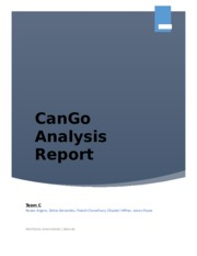 cango analysis Complete ratio analysis of cango using the following assumptions 1 at the beginning of 2009, cango purchased the online gaming company this purchase was for cash.