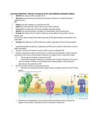 Electron transport chain and oxidative phosphorylation  .docx