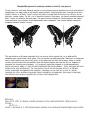 Biological background for analyzing variation in butterfly wing patterns