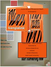 HR_Report_on_Banglalink.docx