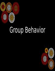 psy321 Group Behavior