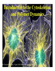 Lectures on cytoskeleton (all) 2017