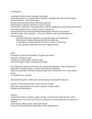 Chapter 3 Cheat Sheet (4) (2) (1).docx