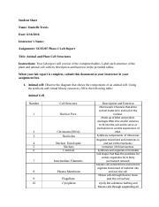 scie207 lab1 worksheet View homework help - scie207_lab1_worksheet_rev-3 from scie 207 at american intercontinental university student sheet name: angelina m cortez date: november 16, 2014 instructors name: dr karen.