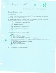 Examen - Passe compose & comprehension