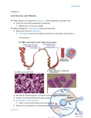 Cell Division and Meiosis