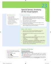 Review Sheet 24- Special Senses Vision - REVIEW SHEET NAME ...