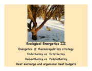 Ecological Energetics III full slide set