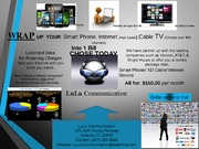 LuLuCommunications. Unit 2. NT1310