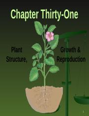 Chapter 31-Plant Structure Growth & Reproduction