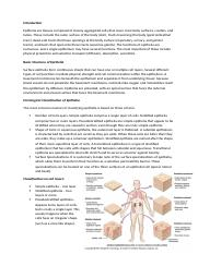 Handout Microlab Epithelium.docx