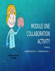 Module One Collaboration Activity