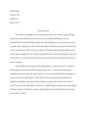 essay reflection .docx
