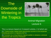 Presentation 6 - The downside of wintering in the tropics
