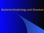 Lecture 2 Bacterial Morphology