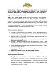 Convocatoria PROFESIONAL GESTION ESCOLAR - (1)