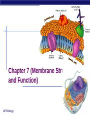Lecture_Cell_Membrane_and_Transport_2015