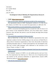 Sociological Critical Thinking #6 (Organizations Research Assignment)(1)
