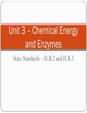 Unit 3 - Chemical Energy and Enzymes.pdf