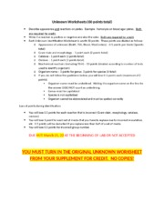 Unknown Worksheets Rubric16A.docx