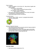 Lecture 6 Protein Complexes: