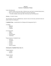 A&P Student Ex 6 Classification of Tissues