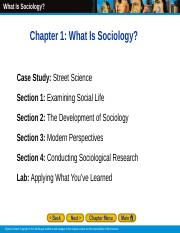 sociology 417 notes.ppt