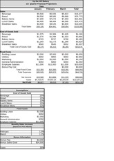 Case 13 Financial Projections