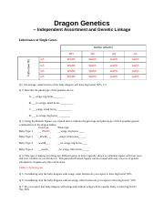 Dragon Genetics Lab answer sheet(1) (1).docx