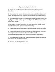 Reproductive System Review Questions.doc