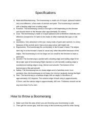 Boomerang Research.docx