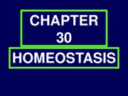 CHAPTER30URINARSYSTEMwebctFEWSLIDES