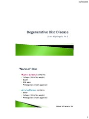 Degenerative Disc Disease 2 slide