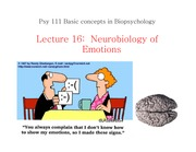 Neurobiology of Emotions (Lecture 16)