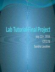 Lab Tutorial, Final Project