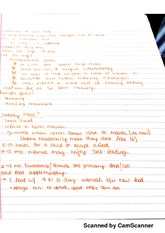 Introduction of Solid Foods Notes