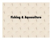 Fishing_Aquaculture