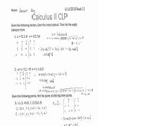 Calculus 2 week 11 answers.pdf