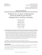 T2-10. Walking New Avenues in Mgt Theories -Bridging Micro and Macro Domains.pdf